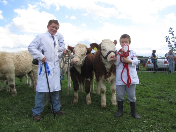 cappamore12_c_aherne_e_odonovan_1stand2nd_interbreed_calf_class