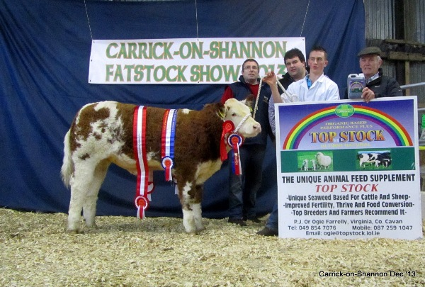 National Weanling Champ Overall Sim Champ