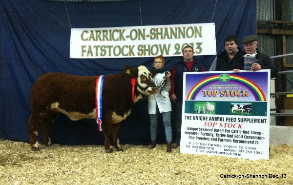 National Yearling Champion