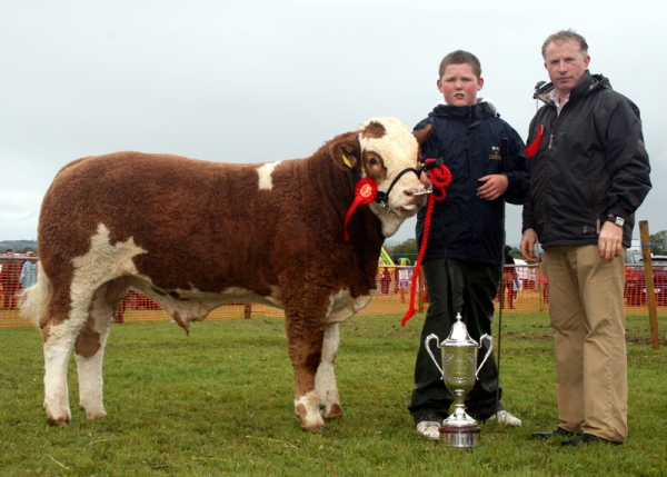 'Shiloh Chancer' Winner of PD Brickley Cup For Bull Any Age at Clonaslee Show 2011