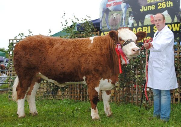Athlone,16 Res Champ 'Fearna Faith'