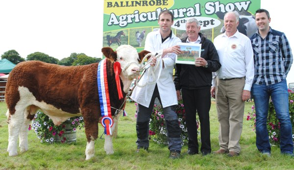 Ballinrobe & Western Club Baby Bull Calf Champion 'Errew Hector'