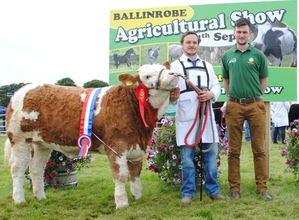 Ballinrobe & Western Club Heifer Calf Champion 'Fearna Glamour'