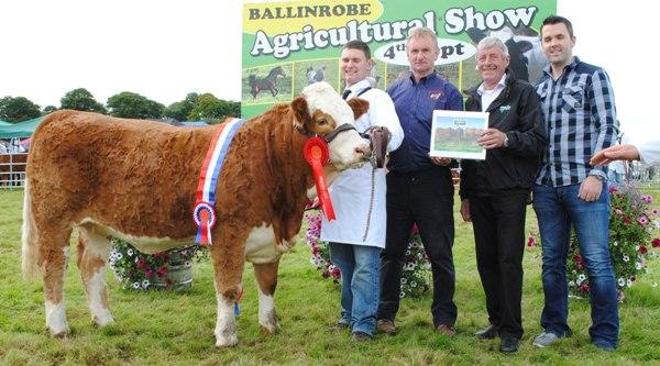Ballinrobe & Western Club Yearling Heifer Champion 'Tonrevagh Gretta'