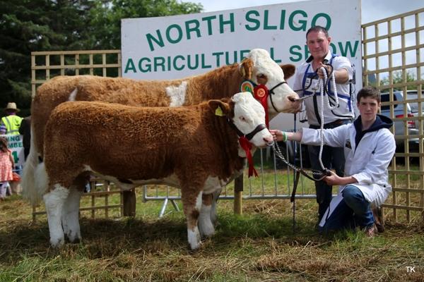 Grange Show Reserve Champion 'Corbally Eires VIP'
