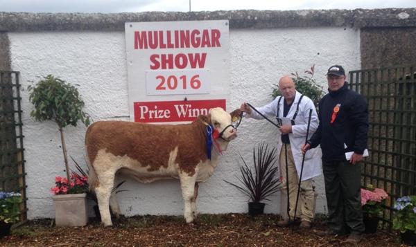 Mullingar'16 Reserve Champion 'Lochview G Homemaker 3rd ET'