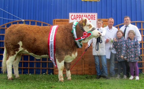 Cappamore 2013 Overall Champion 'Raceview Claudia'