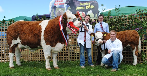 Athlone Show Champion 'Fearna Destiny'