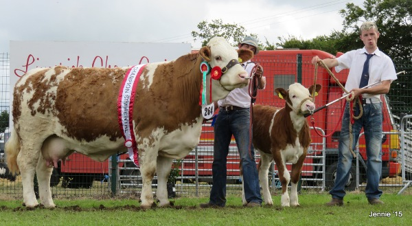 Limerick Female & Overall Champion 'Clonagh Absolutely Fabulous'
