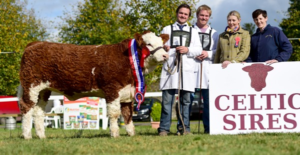 Strokestown National Senior Heifer Champion 'Fearna Gucci'