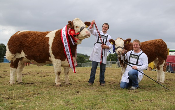 Swinford Champion & Reserve Interbreed Champion 'Fearna Destiny'