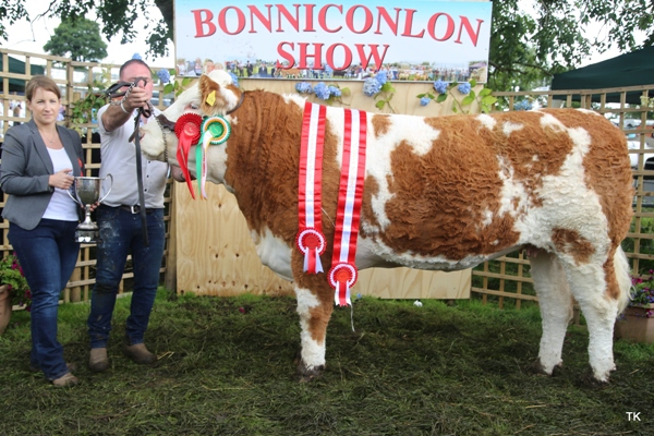 Bonniconlon Show 2017 Simmental Champion, Interbreed Champion & Reserve Overall Champion for Keiran Mullarkey, Sligo
