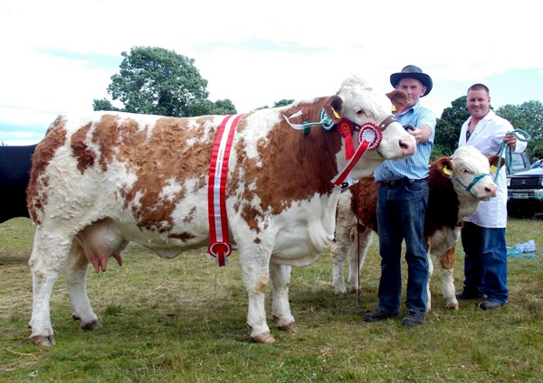 Dunmanway Overall Champion & Reserve Interbreed Champion 'Raceview Alicia Kim'
