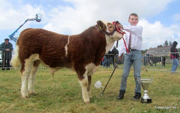 Kingdom County Fair Interbreed Young Handlers Winner