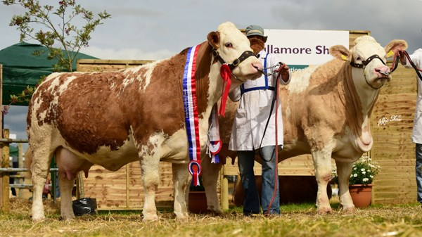National Senior Progeny Pairs Champions 'Clonagh Absolutely Fabulous' & 'Clonagh Darling Eyes'