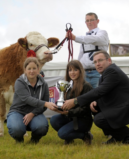 Tullamore Senior Young Handlers Class Winner Killian Farrell