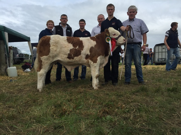 West Club Sponsor Aurivo Feeds Connacht Calf Championships